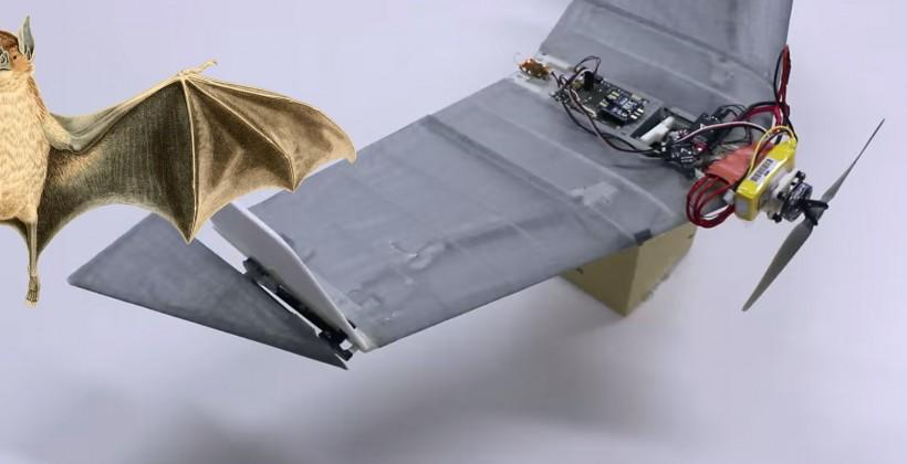 DALER: vampire-inspired robot can fly and walk