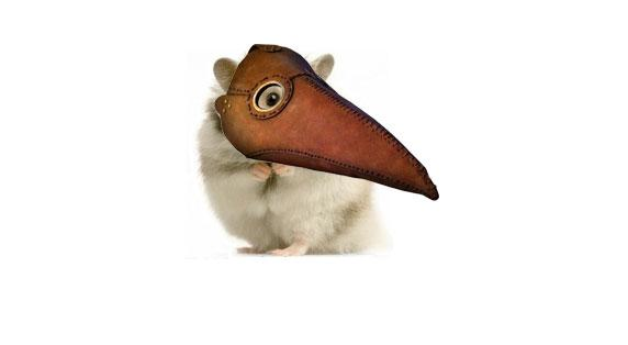 Gerbils replace rats as historical plague spreaders