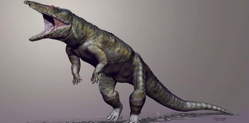 This giant crocodile ancestor prowled Carolina 231m years ago