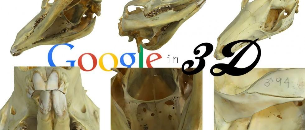 Google expands online museum with 3D objects