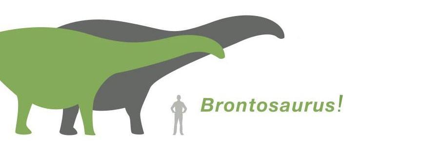 Brontosaurus is back! (in 60 years or so)