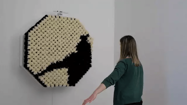 PomPom Mirror reflects your furry side