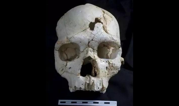 Prehistoric murder indicated by newly discovered skull