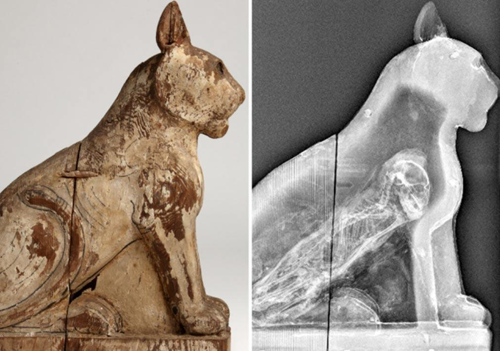 wooden-coffin-of-a-mummified-cat
