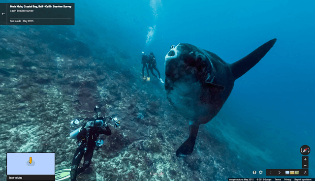 Explore the ocean depths with Google Street View's deep-sea imagery