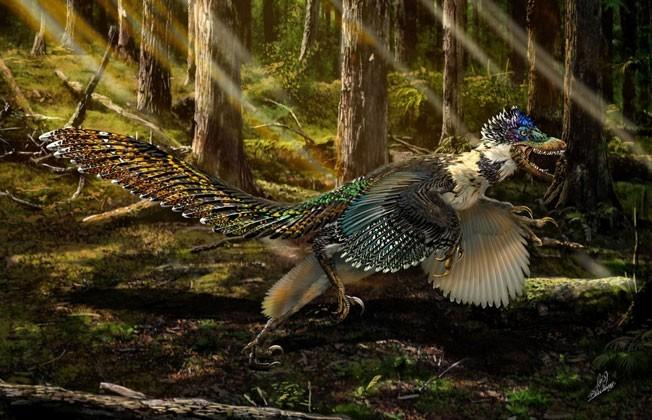 Dinosaur discovered: see this fluffy poodle dragon with wings