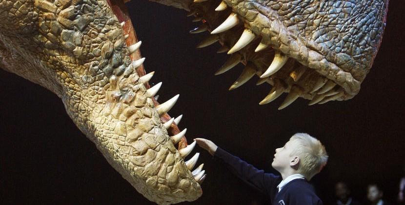 T-Rex's serrated, folded teeth used like near-unbreakable knives