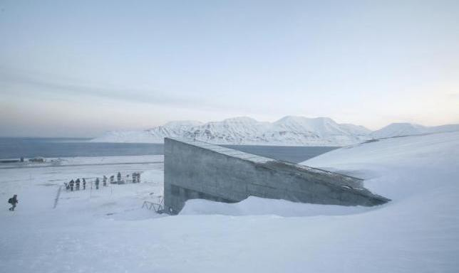 Arctic doomsday seed vault sees first withdrawal due to Syrian war