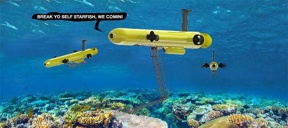 Starfish-killing robots headed to Great Barrier Reef