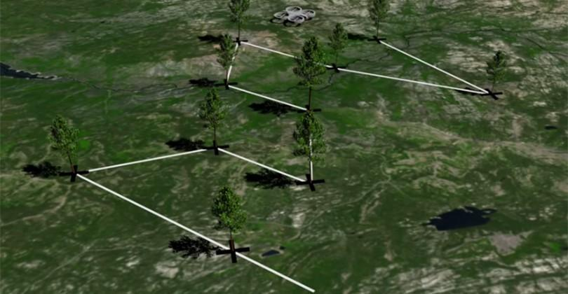 BioCarbon Engineering wants to plant trees with drones