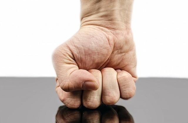 Human hand may have evolved to throw a punch