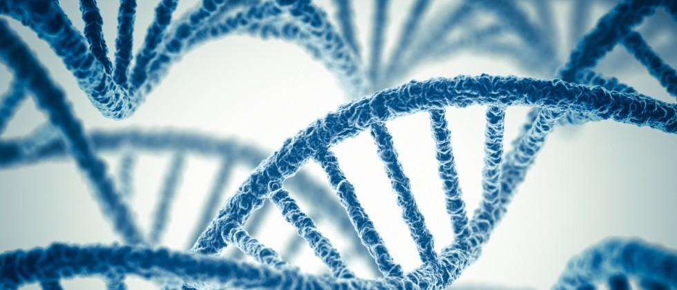 Ancestry in talks with FDA to launch medical DNA testing