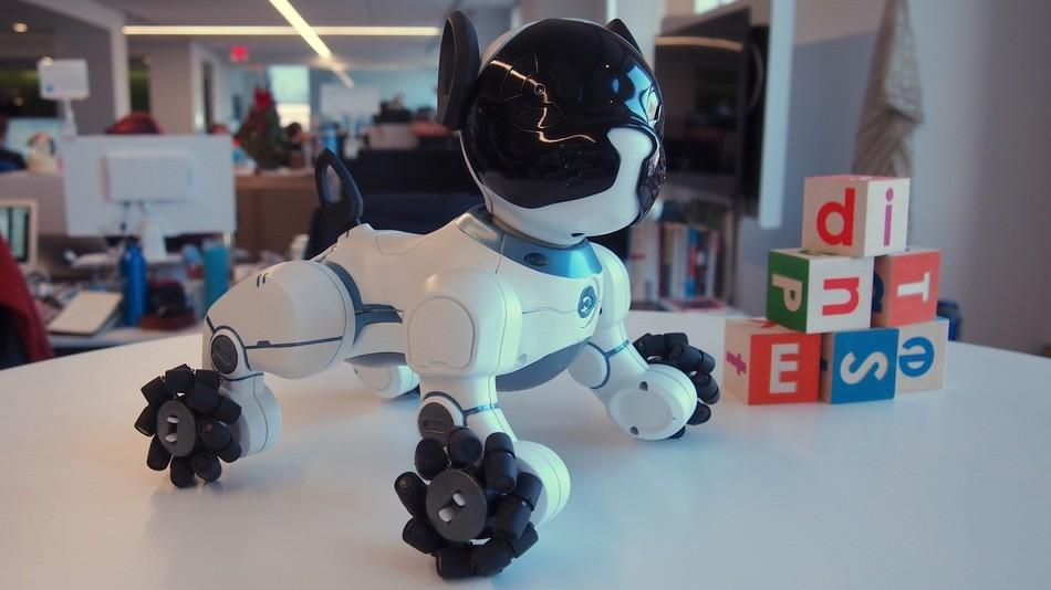 Robot dog CHiP is like the spiritual successor to Sony's Aibo