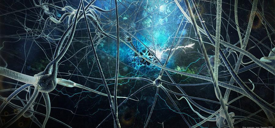 DARPA: 'stentrode' implant travels to brain via blood vessels