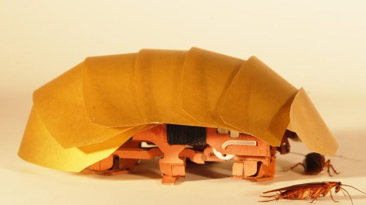 Robo-roach takes search & rescue tips from maligned pest