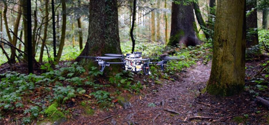 Drones can autonomously follow forest paths with new software