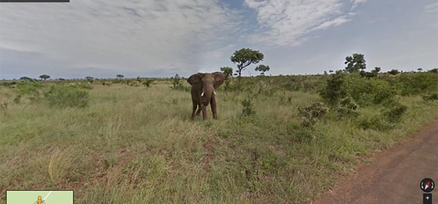 Google Maps explores South Africa