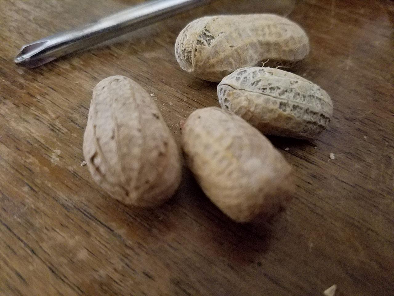 peanuts_galaxys7
