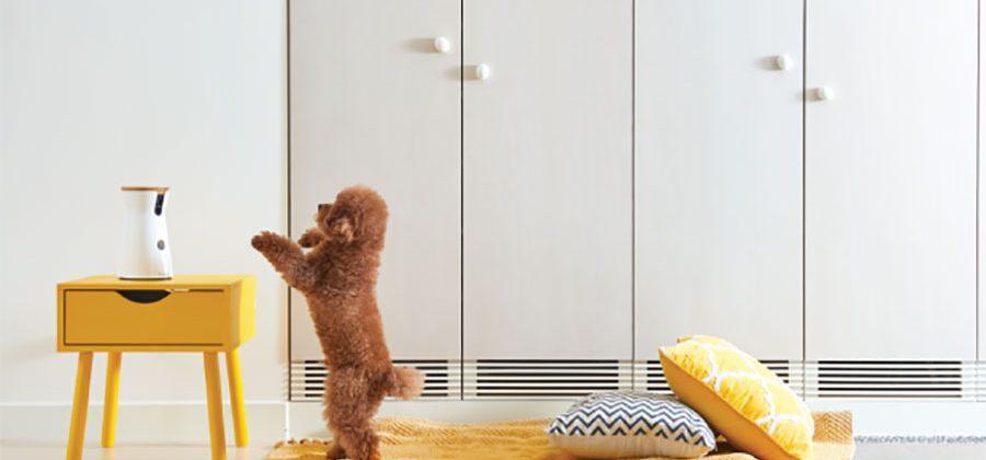 Furbo is a dog camera that tosses treats