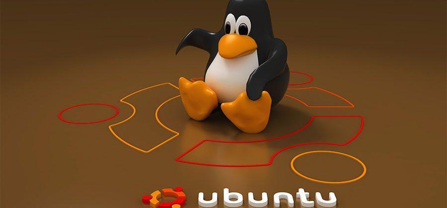 Midori Ubuntu smartphone tipped in bug chats