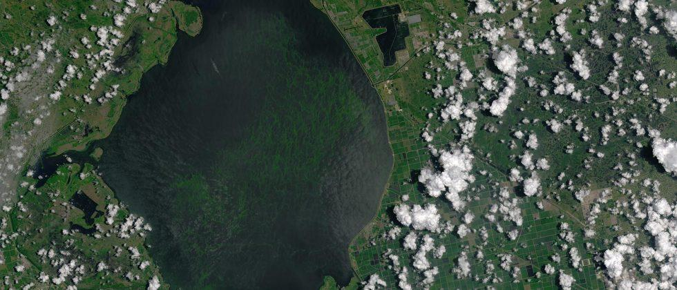 NASA spies Florida's crazy algae bloom from space