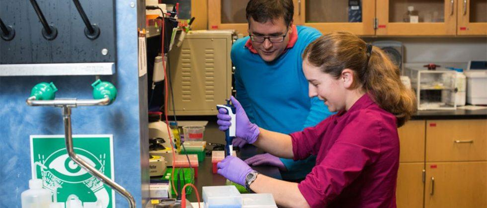 Researchers store 200MB of data on molecular strands