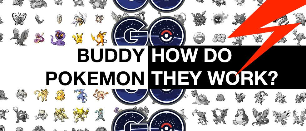 Pokemon GO Update: Buddy System nearly enabled [UPDATE: Confirmed]