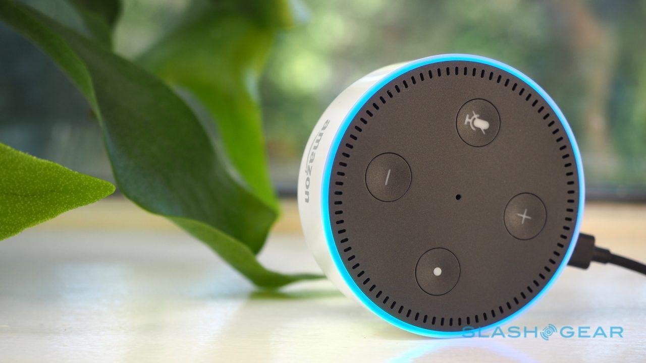 amazon-echo-dot-review-5