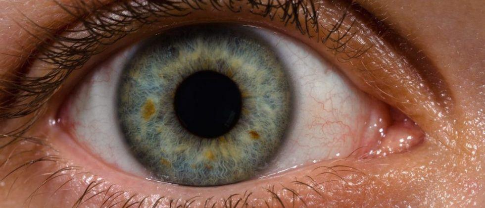 Nikon to help fight diabetes-related eye diseases with optical engineering expertise