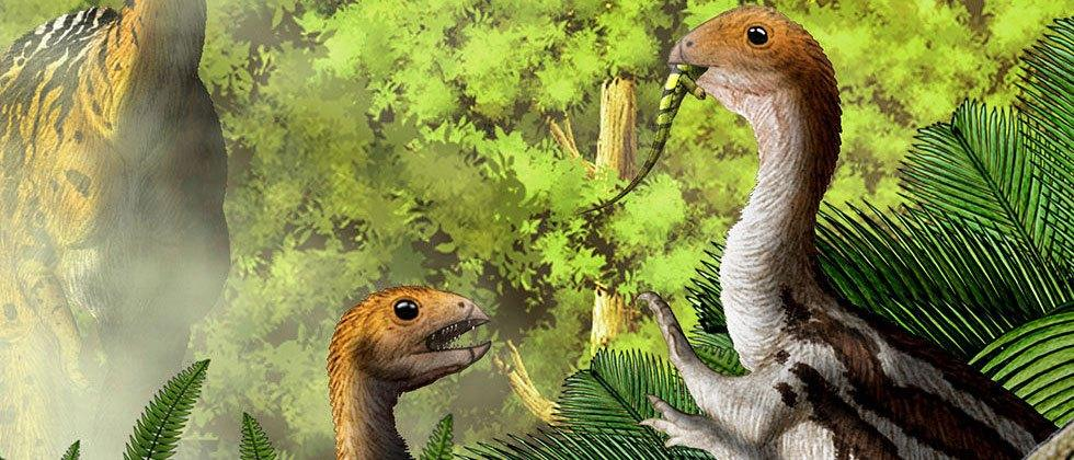 This odd dinosaur changed drastically as it aged