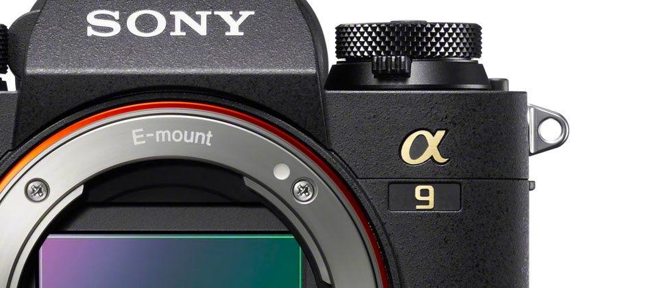 New Sony A9 camera revealed [with sample photos]