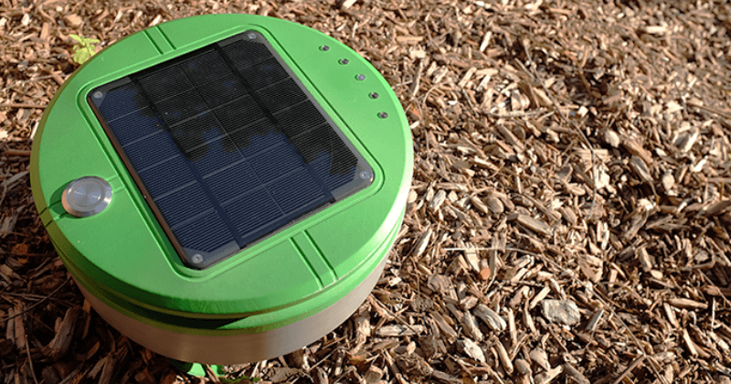 Tertill is a solar-powered weeding Roomba