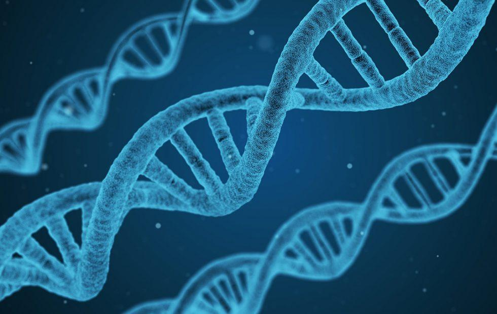 This DNA data storage study will make you reconsider the digital future