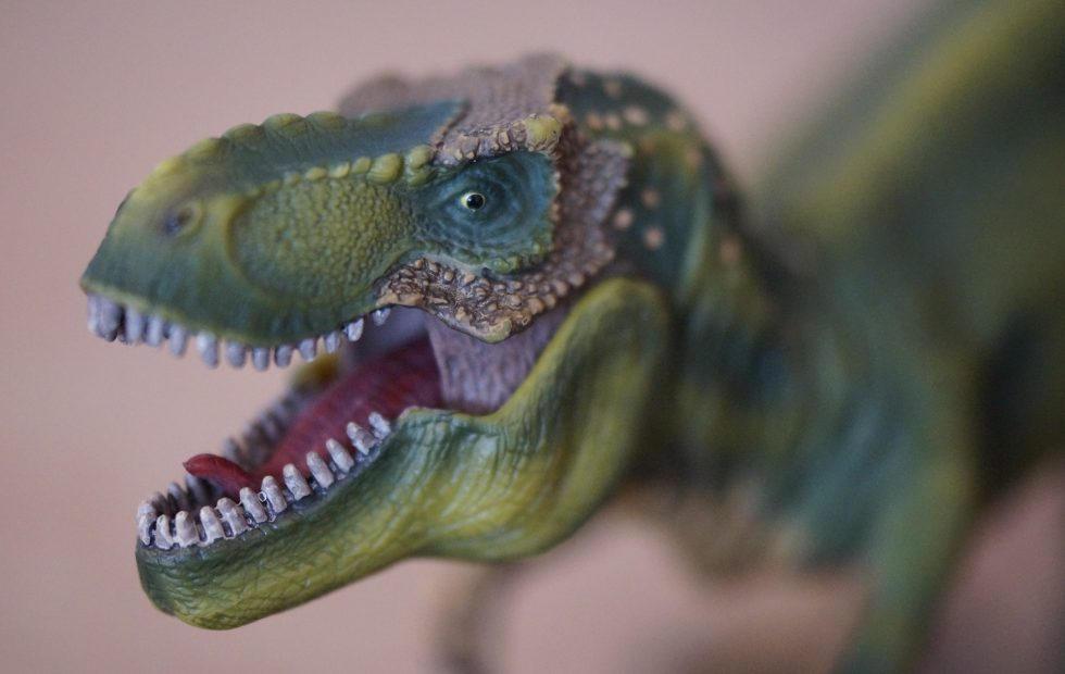 T-Rex was a power-walker not a sprinter, AI study concludes