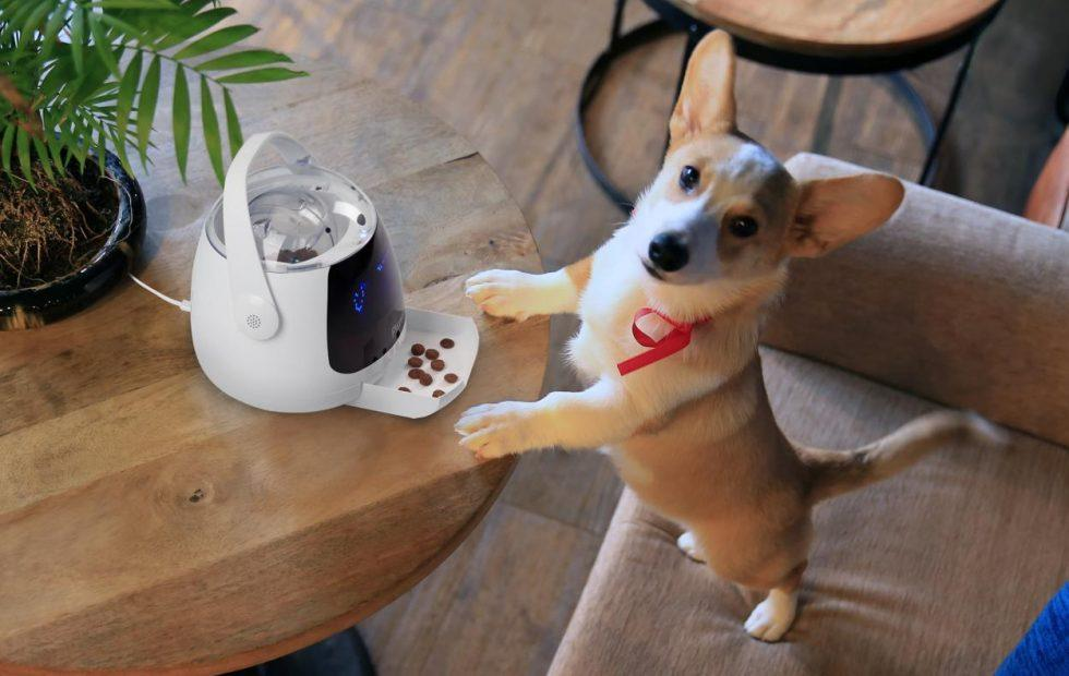 Acer Pawbo Munch, WagTag and iPuppyGo bring smart tech for pet owners