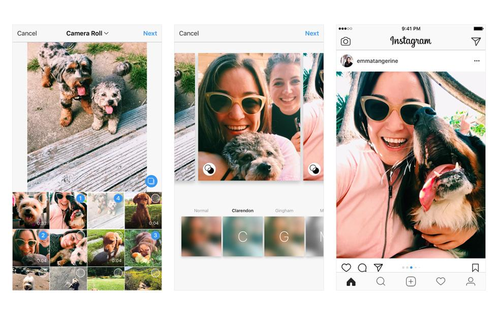 Instagram brings portrait and landscape photos to batch posts