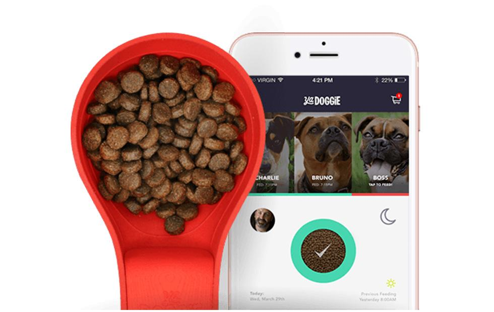 Ya Doggie smart food scoop tracks when your dog eats