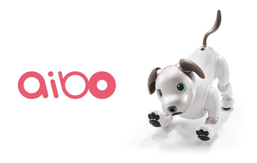 Sony aibo robot dog returns, finally looks, moves like a dog