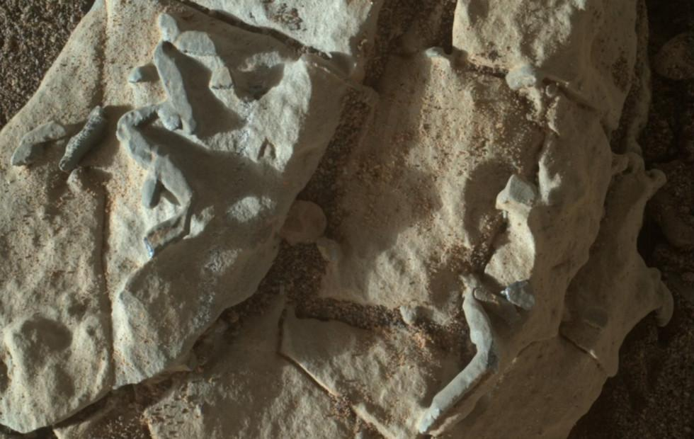 Curiosity finds strange, tiny Mars feature: trace fossils possible