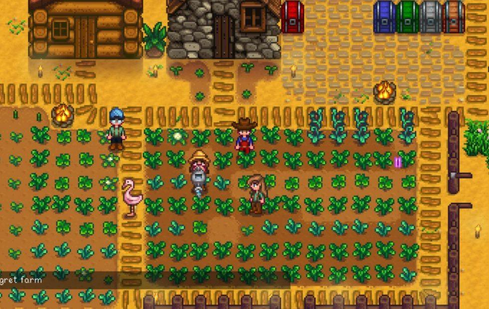 Stardew Valley multiplayer update teased