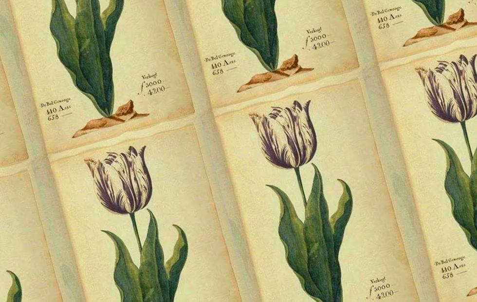 Bitcoin price has no place in the bubbles of Tulip Mania [Opinion]