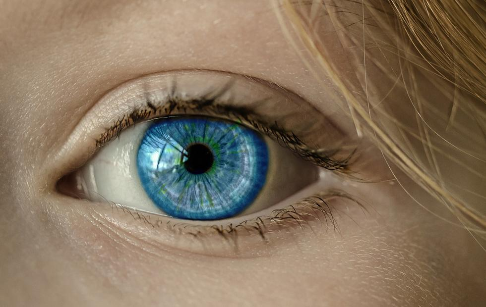 Google AI looks at your eyes to predict heart disease risk