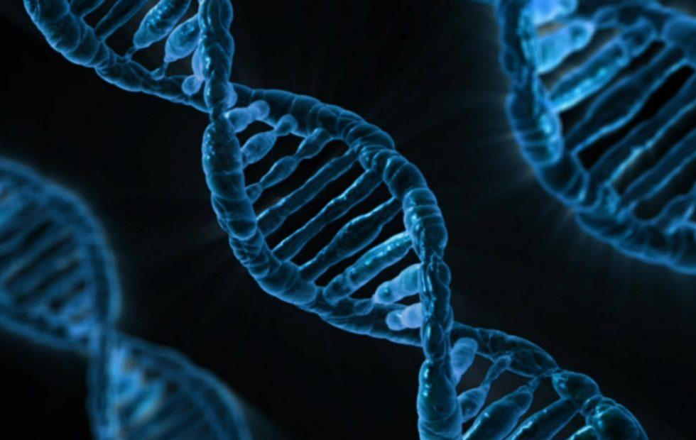 No, NASA's astronaut twin hasn't had a DNA rewrite