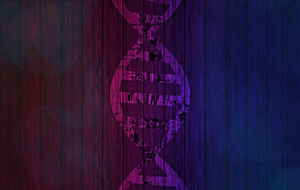 23andMe gets FDA approval for BRCA cancer risk DNA test