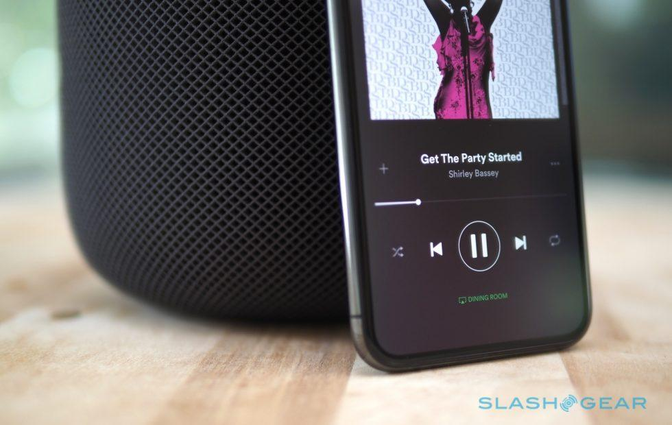 Spotify voice controls tease smart speaker potential
