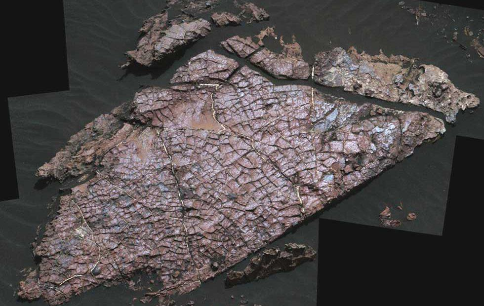 Desiccation Cracks on Mars shed new light on ancient climate
