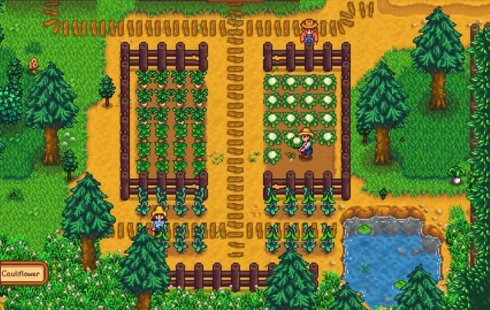 Stardew Valley multiplayer just got a PC release date - SlashGear