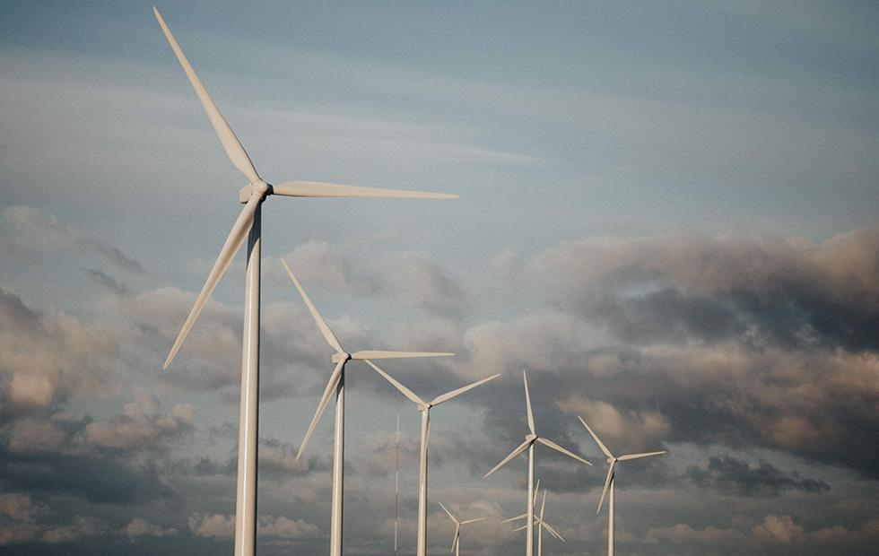 Nestle launches wind turbine farm as part of renewable energy plan
