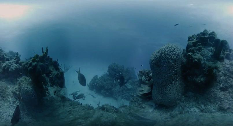 Hydrus VR camera system captures 360 8K video deep underwater