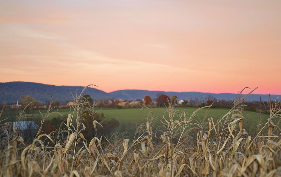 Microsoft reveals big plan to launch broadband Internet in rural Ohio